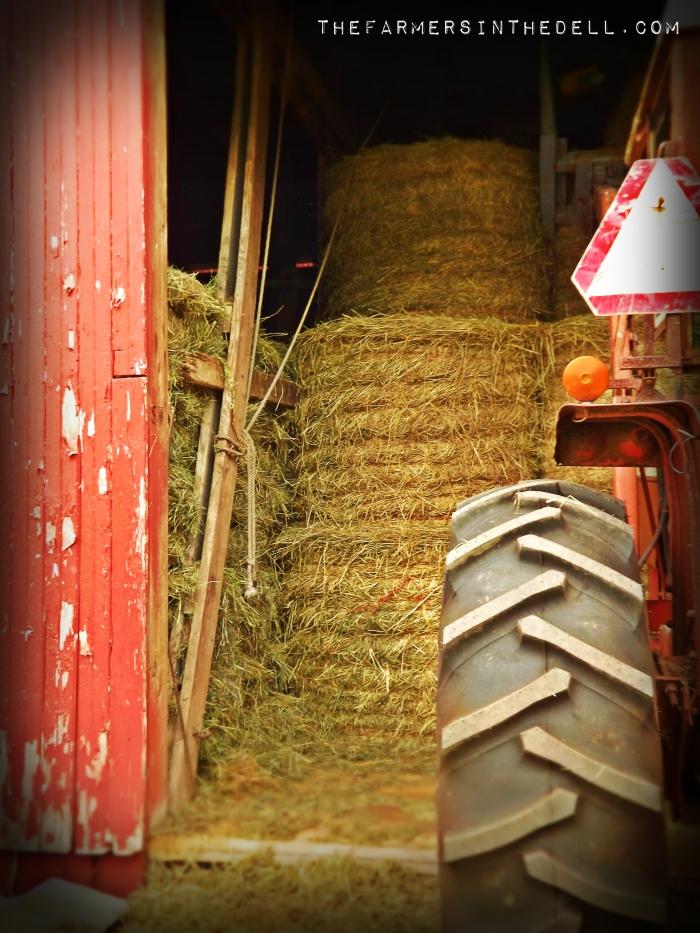 farm tractor - TheFarmersInTheDell.com