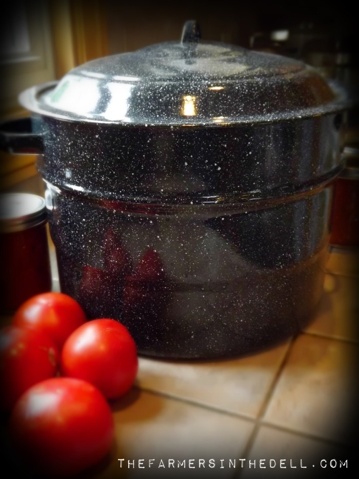water bath canning - TheFarmersInTheDell.com