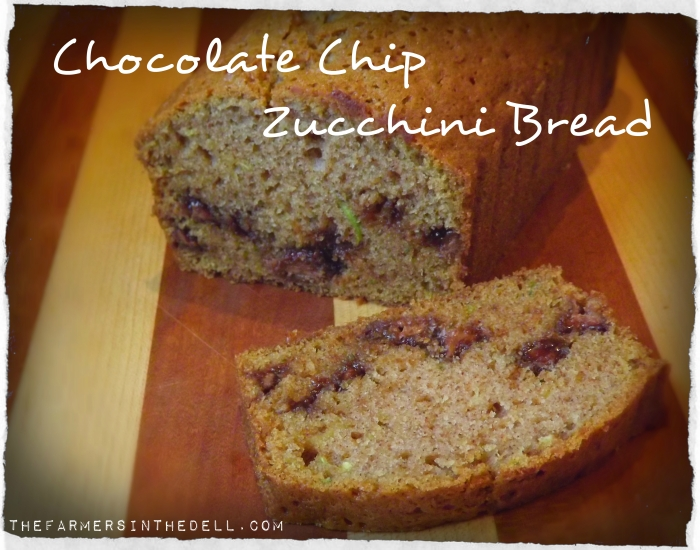 chocolate chip zucchini bread - TheFarmersInTheDell.com