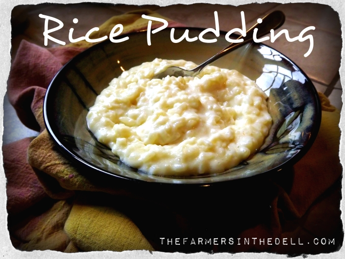 rice pudding - TheFarmersInTheDell.com