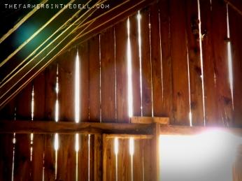 old barn boards - TheFarmersInTheDell.com