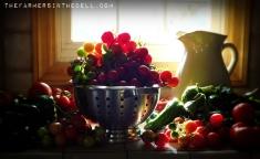 garden harvest - TheFarmersInTheDell.com