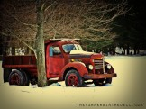abandoned old truck - TheFarmersInTheDell.com