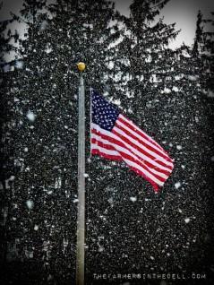 american flag - TheFarmersInTheDell.com