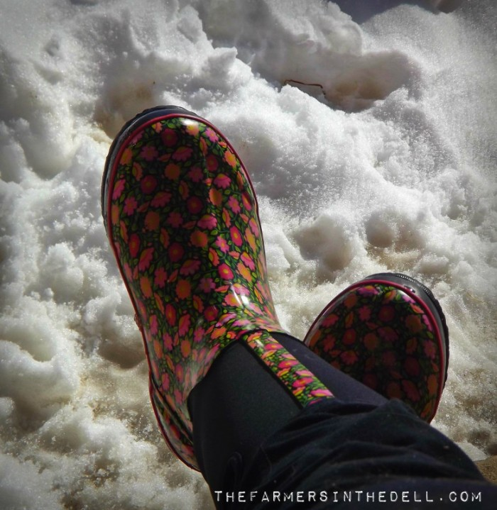 chore boots - TheFarmersInTheDell.com