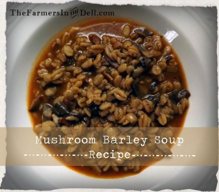 mushroom barley soup - TheFarmersInTheDell.com
