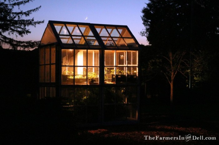 greenhouse build from old windows - TheFarmersInTheDell.com