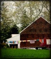 amish clothes line, lancaster, pa - TheFarmersInTheDell.com