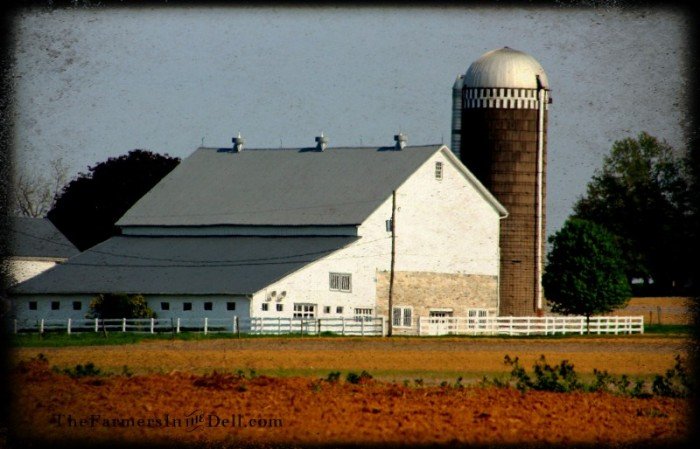 amish barn, lancaster, pa - TheFarmersInTheDell.com