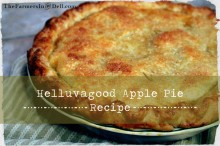 apple pie - TheFarmersInTheDell.com