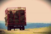 hay wagon - TheFarmersInTheDell.com