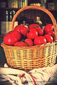 basil and garlic tomato sauce recipe - TheFarmersInTheDell.com