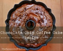 chocolate chip coffee cake - TheFarmersInTheDell.com