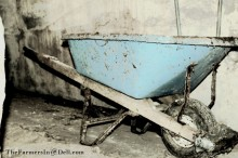 wheelbarrow - TheFarmersInTheDell.com