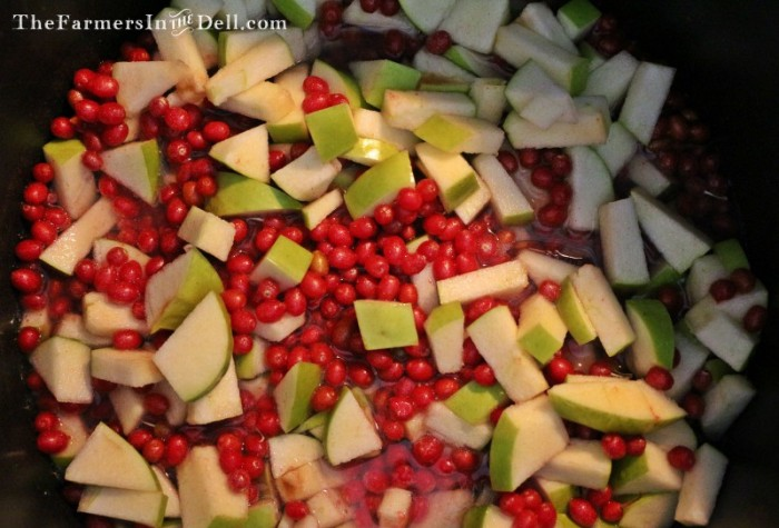 autumn olive jam - TheFarmersInTheDell.com