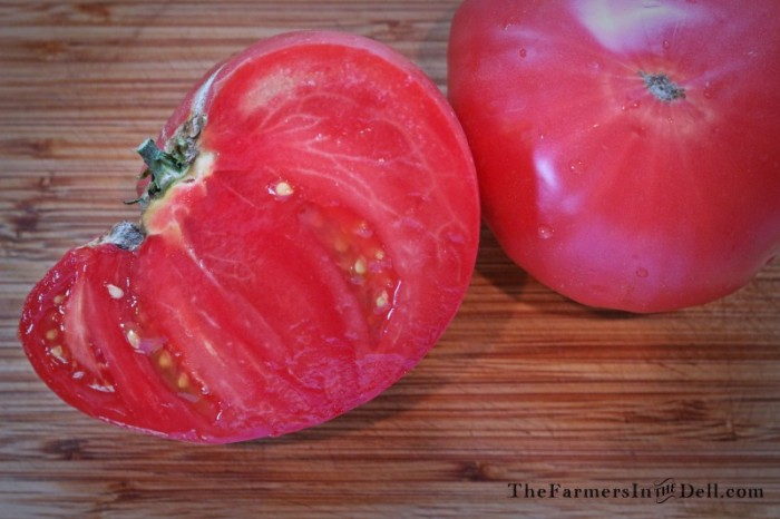 brandywine tomato - TheFarmersInTheDell.com