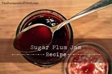 sugar plum jam - TheFarmersInTheDell.com