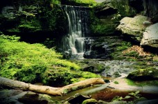 waterfall - TheFarmersInTheDell.com