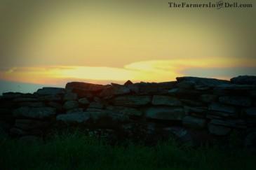 stonewall at dusk - TheFarmersInTheDell.com