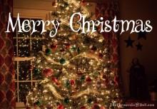 christmas tree - TheFarmersInTheDell.com