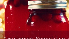 cranberry moonshine - TheFarmersInTheDell.com