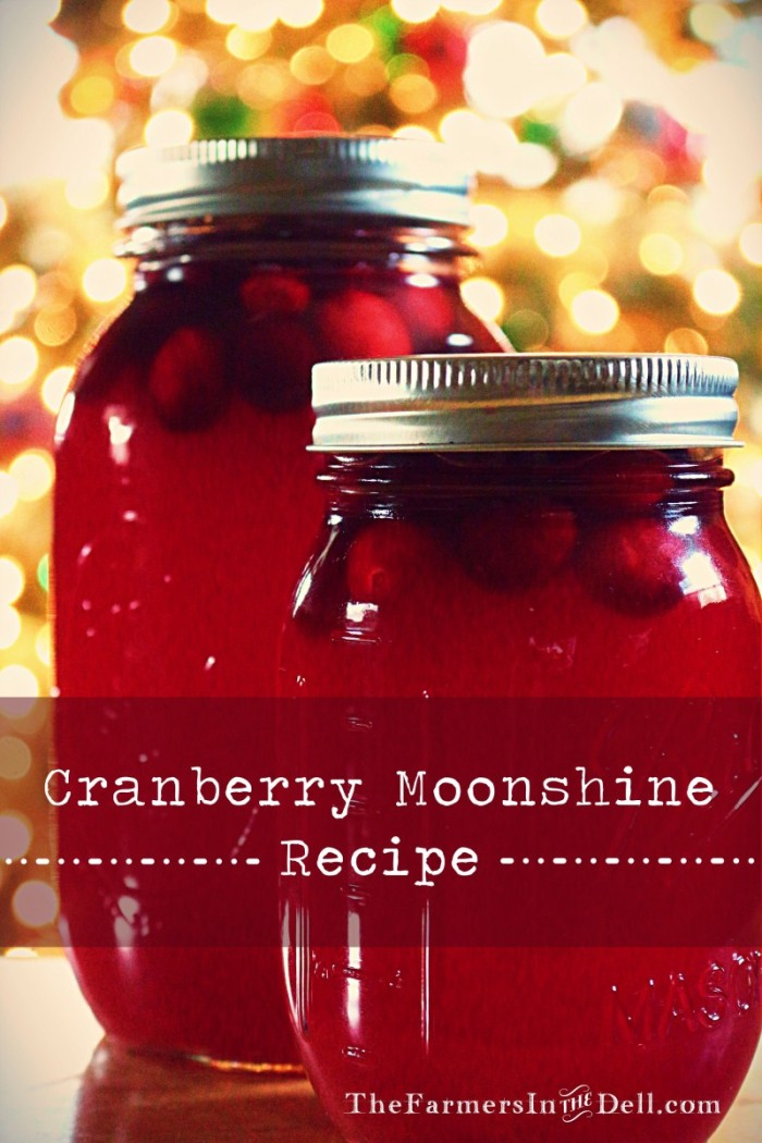 cranberry moonshine - TheFarmersInTheDell.com