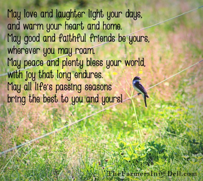 irish blessing - TheFarmersInTheDell.com