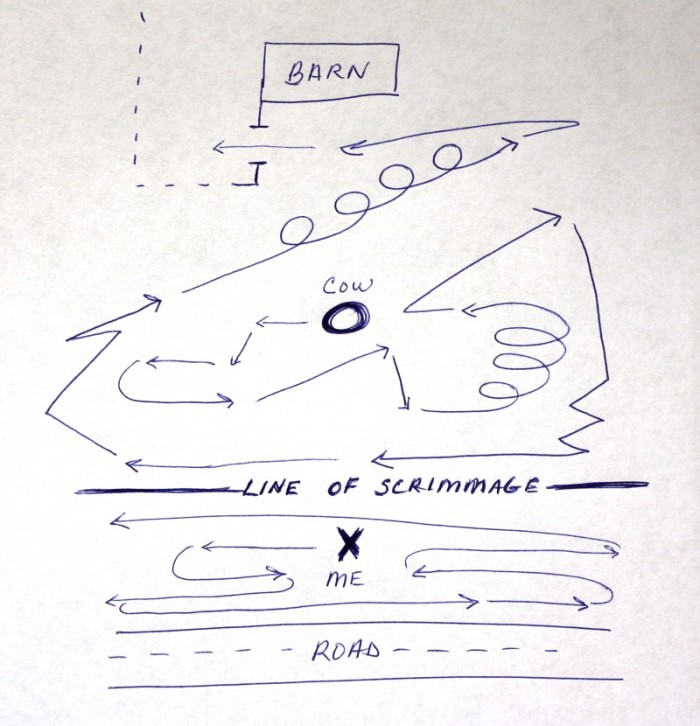 defense - TheFarmersInTheDell.com