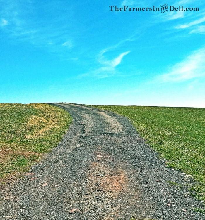 dirt road - TheFarmersInTheDell.com