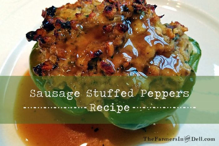 stuffed peppers - TheFarmersInTheDell.com