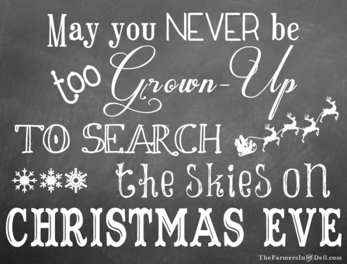 may you never be too grown up to search the skies on Christmas Eve - TheFarmersInTheDell.com