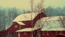snowstorm - TheFarmersIntheDell.com