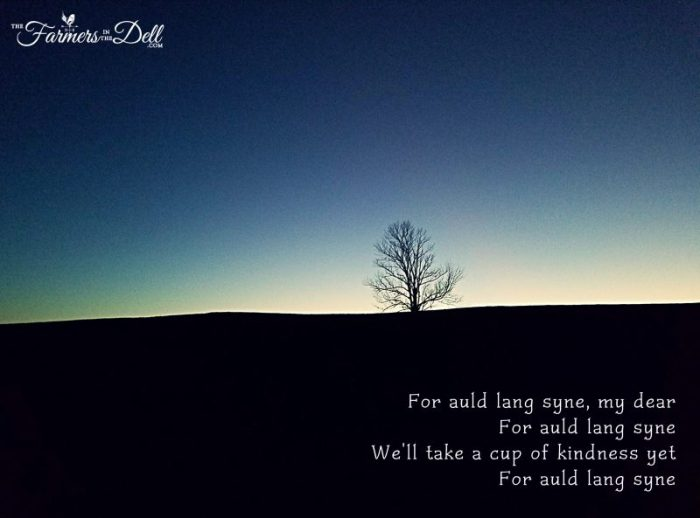 auld lang syne - TheFarmersInTheDell.com