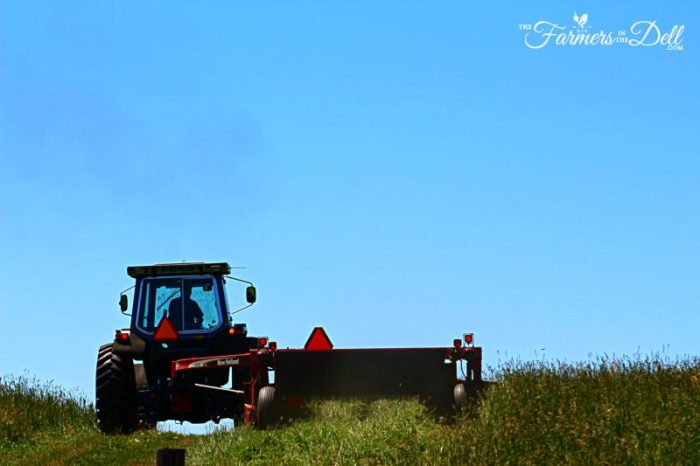 mowing hay - TheFarmersInTheDell.com