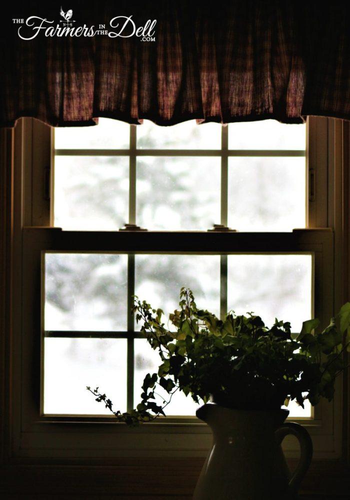 winter window - TheFarmersInTheDell.com
