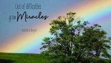 out of difficulties grow miracles - TheFarmersInTheDell.com