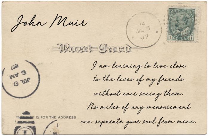 postcards from quarantine - TheFarmersInTheDell.com
