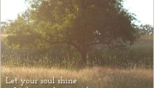 let your soul shine - TheFarmersInTheDell.com