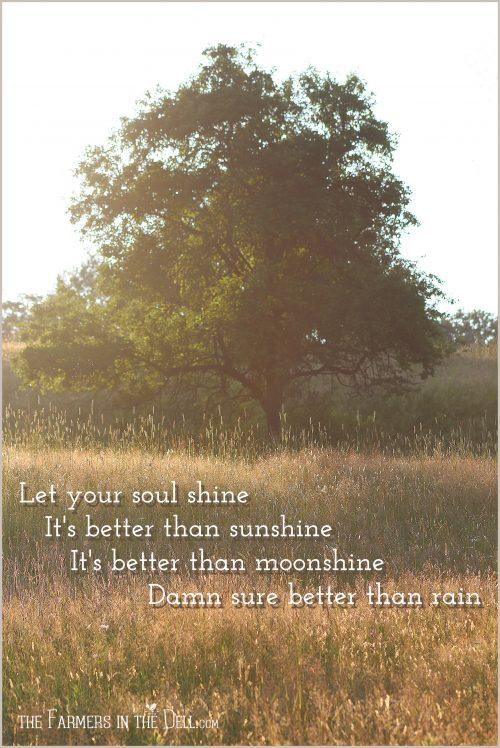 let your soul shine - TheFarmersInTheDell.com